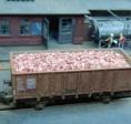 Ziegel als Ladegut, etwa 6000 Stk.